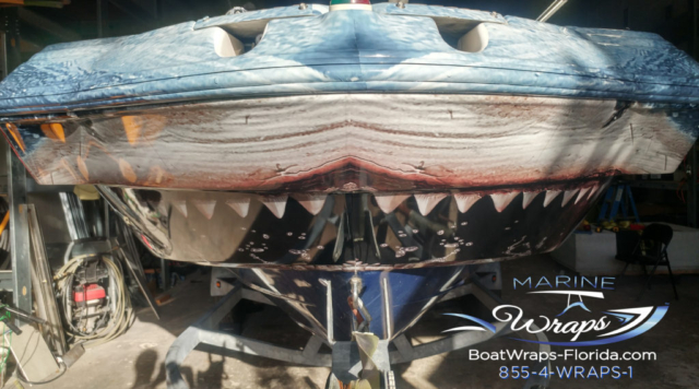 Shark Boat Wrap