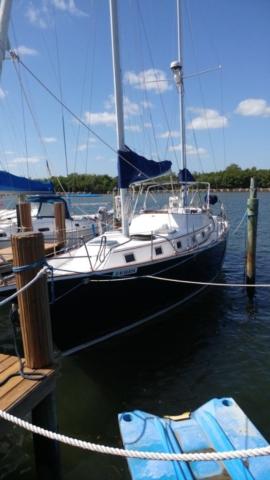 boat-hull-wrap-protection