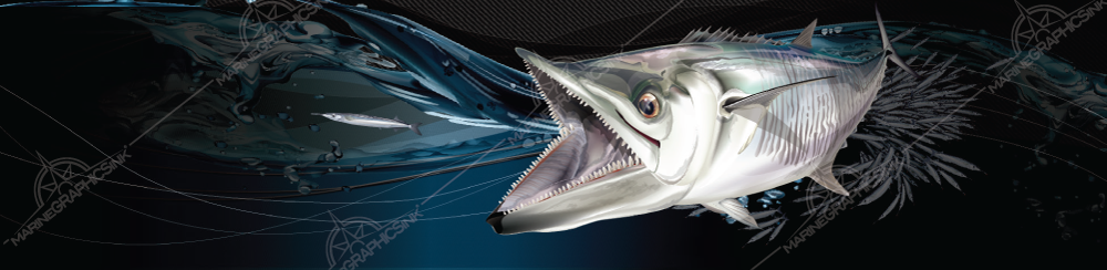 King_mackerel_boat_graphics